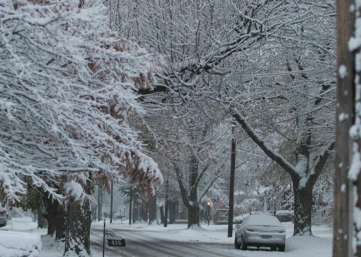 snow5b